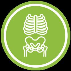 Green X-Ray Icon